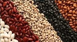 قیمت انواع لوبیا چیتی