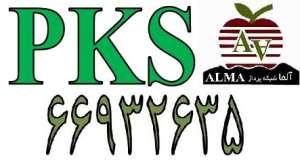 قطعه اتصال درب و بدنه ترانکینگ پی کا اس PKS پارت نامبر 10170