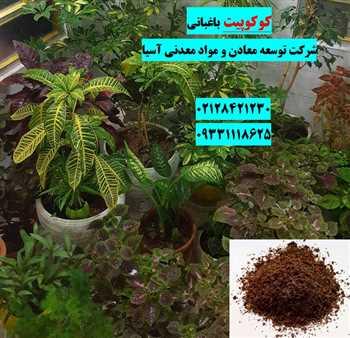 کوکوپیت باغبانی و گلخانه