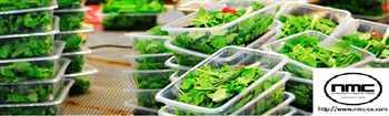 ماشین آلات خط اتومات شستشو و بسته بندی سبزیجات و صیفی جات  سالاد فصل
