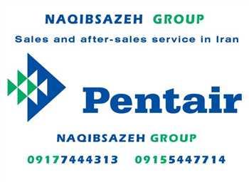پمپ تصفیه Pentair مدل SUPER FLO 300