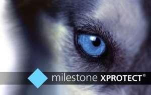فروش باورنکردنی لایسنس کرک نرم افزار مایلستون 2020 MileStone