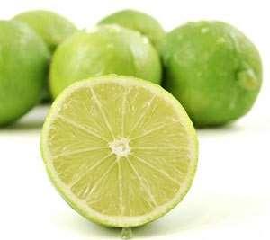 ساخت سردخانه لیمو ترش